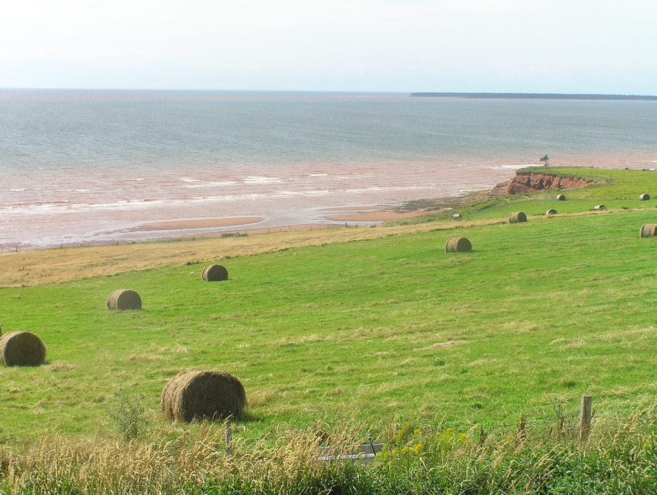 Hay stacks by the ocean Bonshaw  Canada