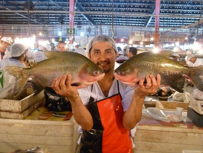 Visiting the fish market in Manaus