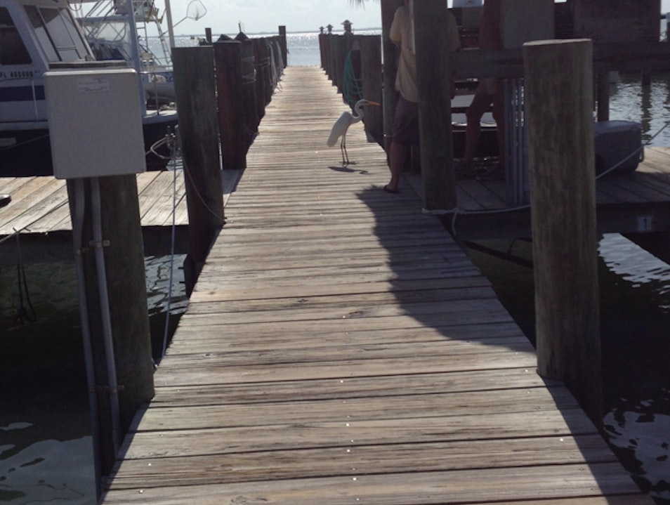 Explored Jensen's Docks Captiva Florida United States