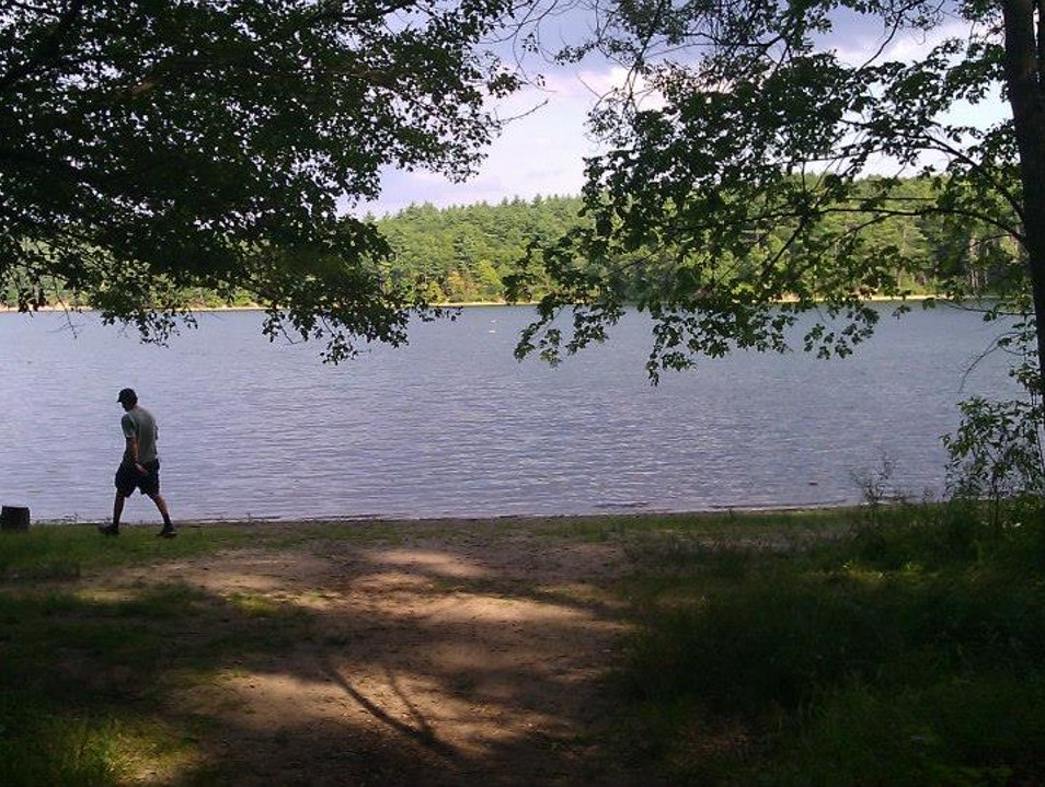 Have a Dip in Walden Pond Concord Massachusetts United States