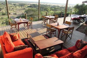 Kenya Safari Highlights