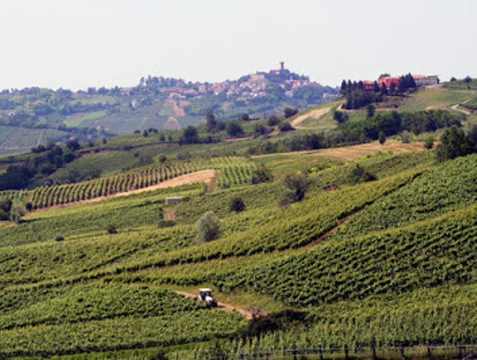The unknown wine region south of Milan Broni  Italy