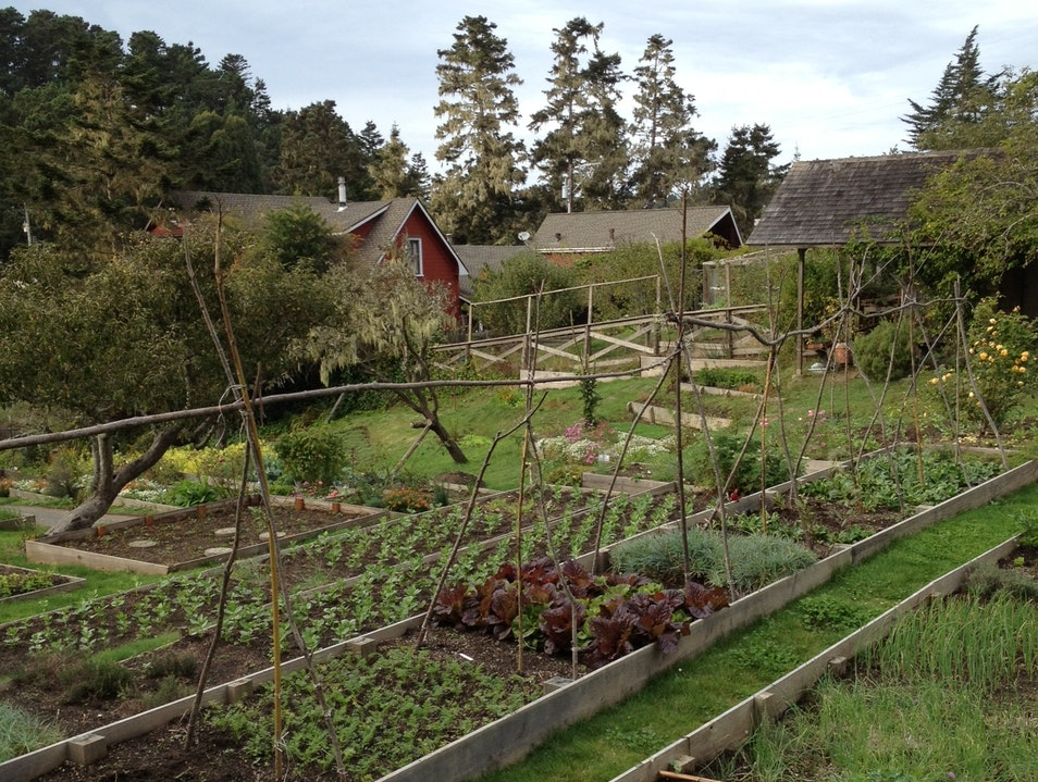 From Garden to Table Mendocino California United States