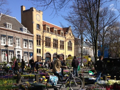 Plant and Flower Market  Utrecht  The Netherlands