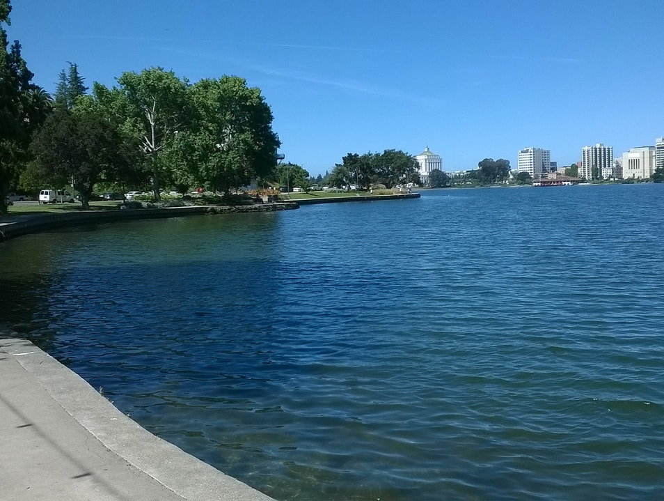 Take a Walk Around Oakland's Lake Merritt Oakland California United States