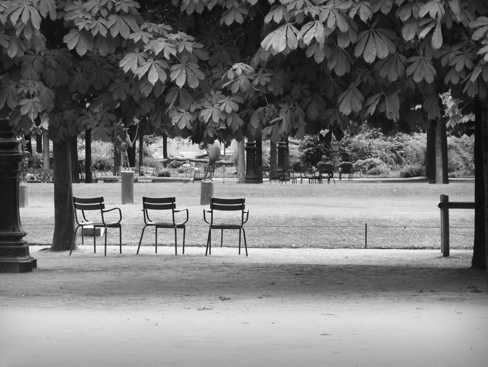 Take a Seat in Paris   France