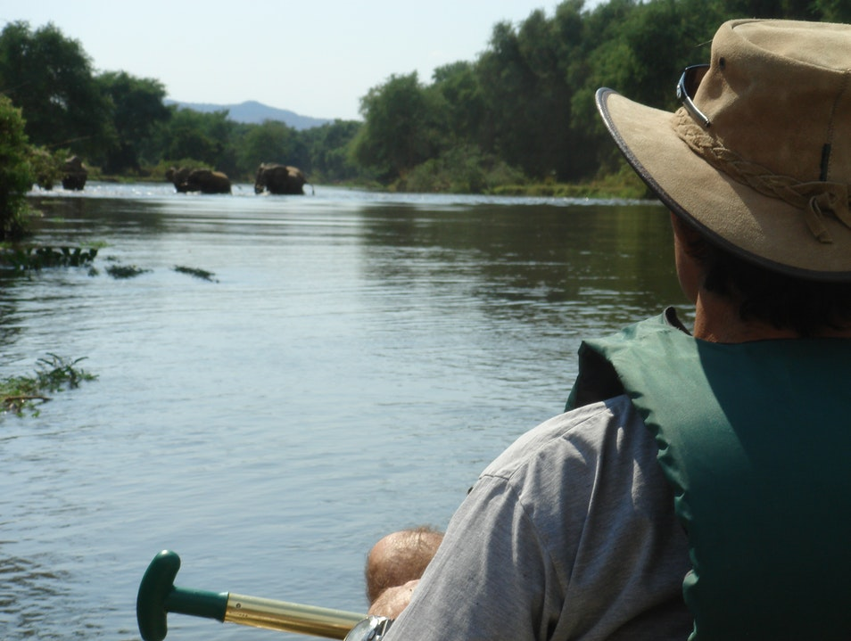 Canoeing Safari in Zambia negotiating the Kazungula Channel & being charged by elephant