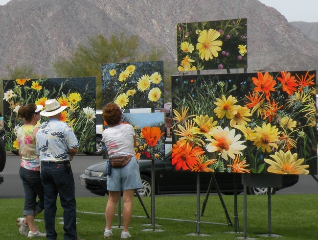 Circle of Art festival in Borrego Springs, CA
