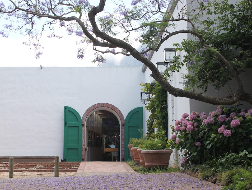 Historic Vines and Sweet Wines in Constantia