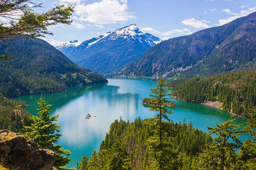 North Cascades National Park has a diverse landscape, encompassing mountains, glaciers, a temperate rain forest, and other geological complexities.