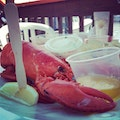 Red's Lobster Pot Point Pleasant Beach New Jersey United States