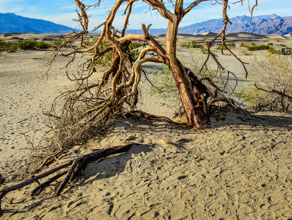 Beautiful landscape  Death Valley National Park California United States