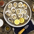 Hog Island Oyster Marshall California United States