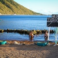 Bubble Beach Spa   Dominica