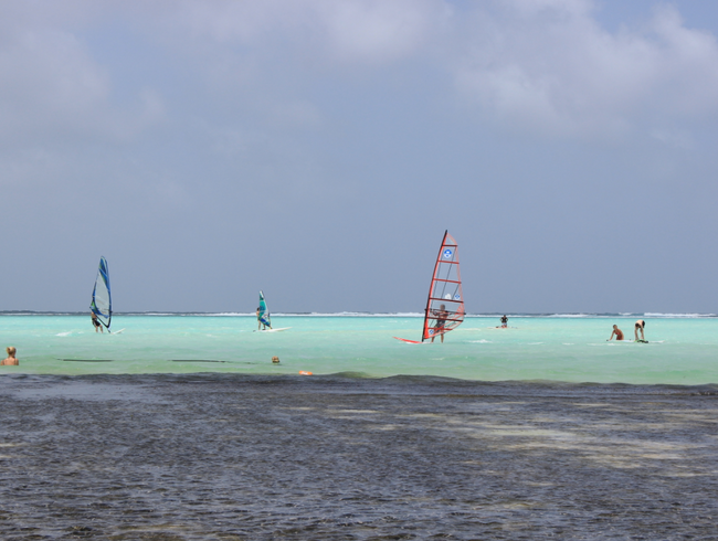 Learn to Windsurf at the Best Windsurfing Spot in the World