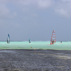 Windsurf Place