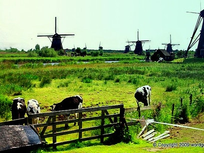 Kinderdijk Kinderdijk  The Netherlands