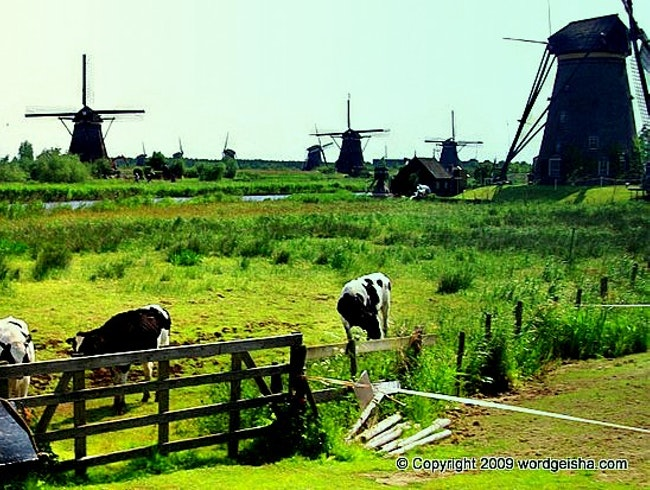 The Windmills of Kinderdijk: How Dutchies Made the Netherlands