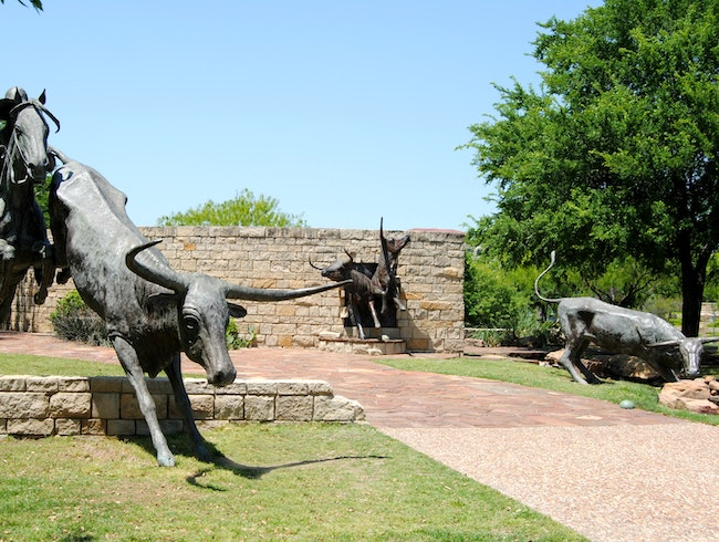 Embrace the History of the Shawnee Trail Cattle Drives