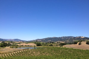 J. Rickards Winery