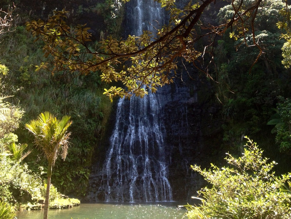 Piha Waterfall Auckland  New Zealand