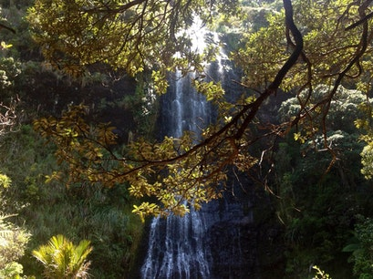 Piha Waterfalls Piha  New Zealand
