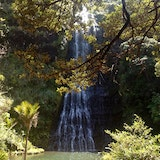 Piha Waterfalls