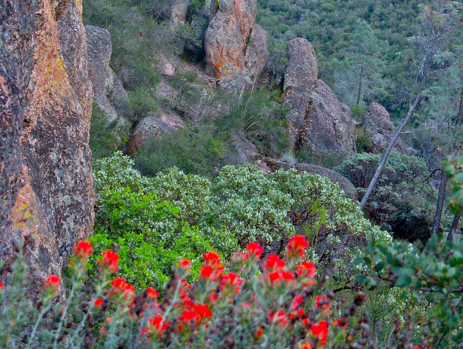 Pinnacles Hike Paicines California United States