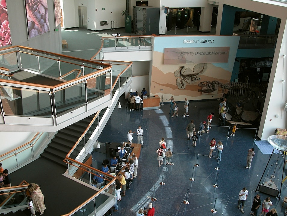 Explore a Multitude of Exhibits Baltimore Maryland United States