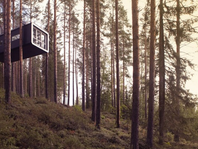 Treehotel Sweden Elevates the Eco-Hotel Experience