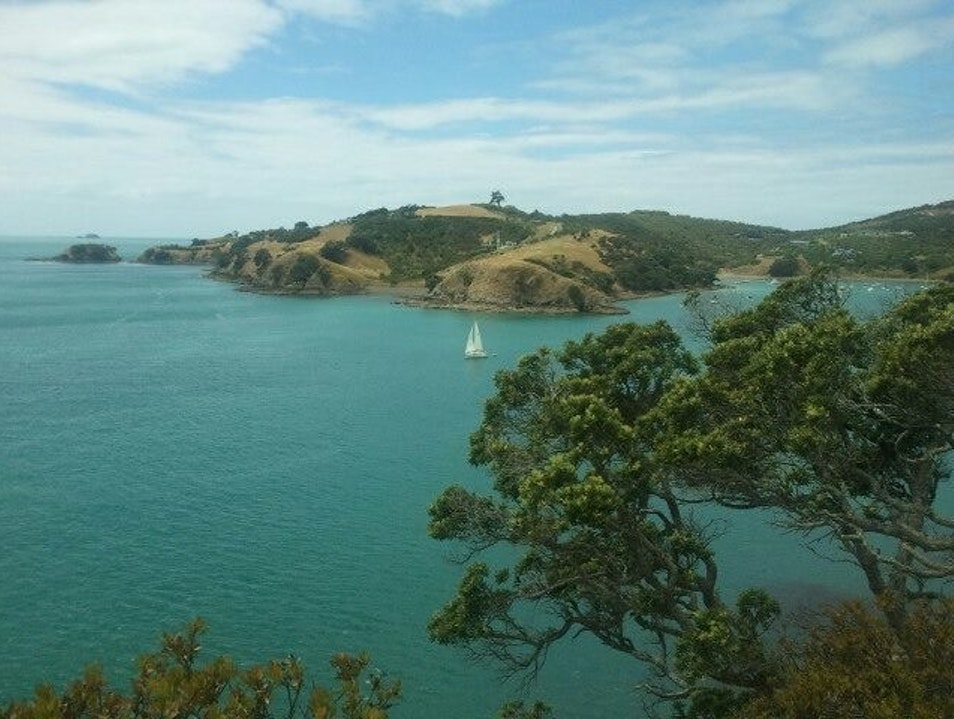 The Best Island on the Planet Auckland  New Zealand