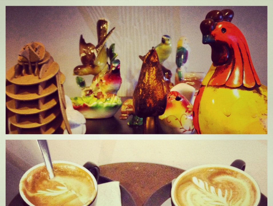 Coffee And Birds