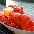 Beal's Lobster Pier Southwest Harbor Maine United States