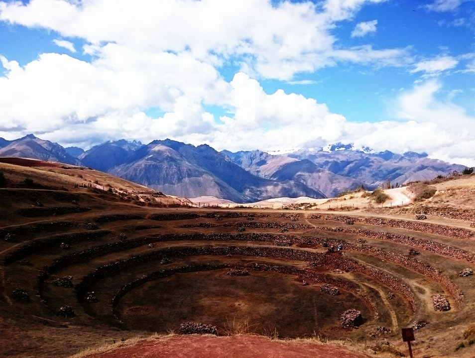 Majestic Moray - Simply a Must! Maras  Peru