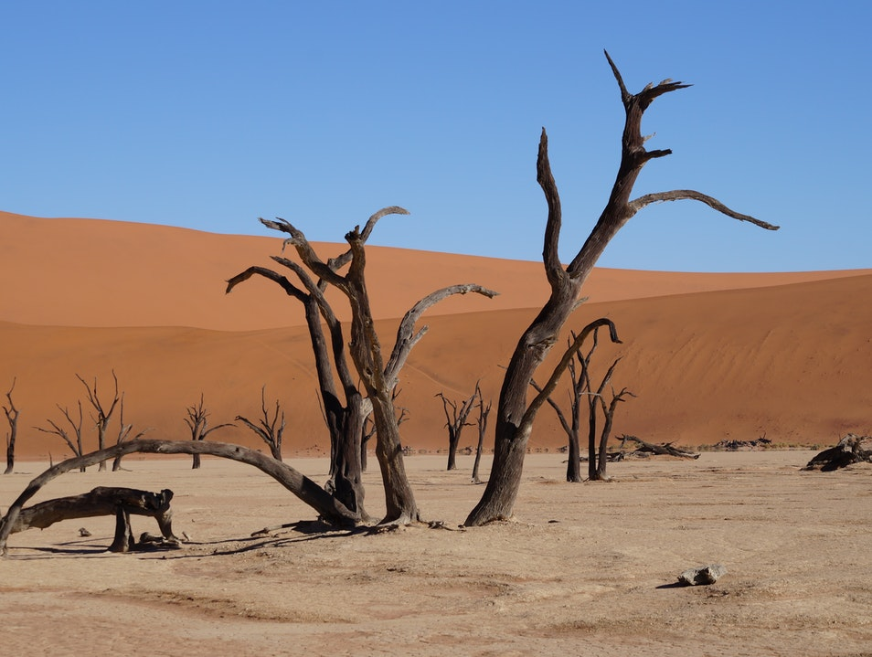 Dead Zone at the Red Sand Dunes Njombe  Tanzania