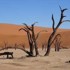 Dead Zone at Red Sand Dunes