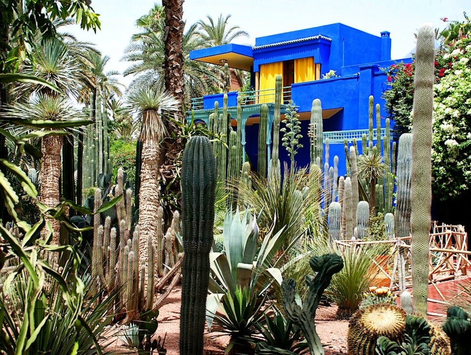 Jardin majorelle marrakech afar for Jardin marrakech