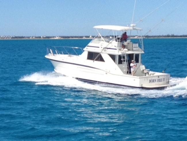 Born free fishing charters nassau for Fishing nassau bahamas