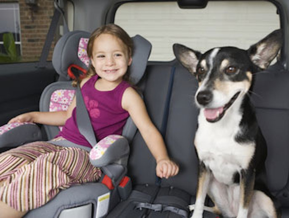 Rent the Driver's Place; Enjoy with Family and Kids on Your Trips