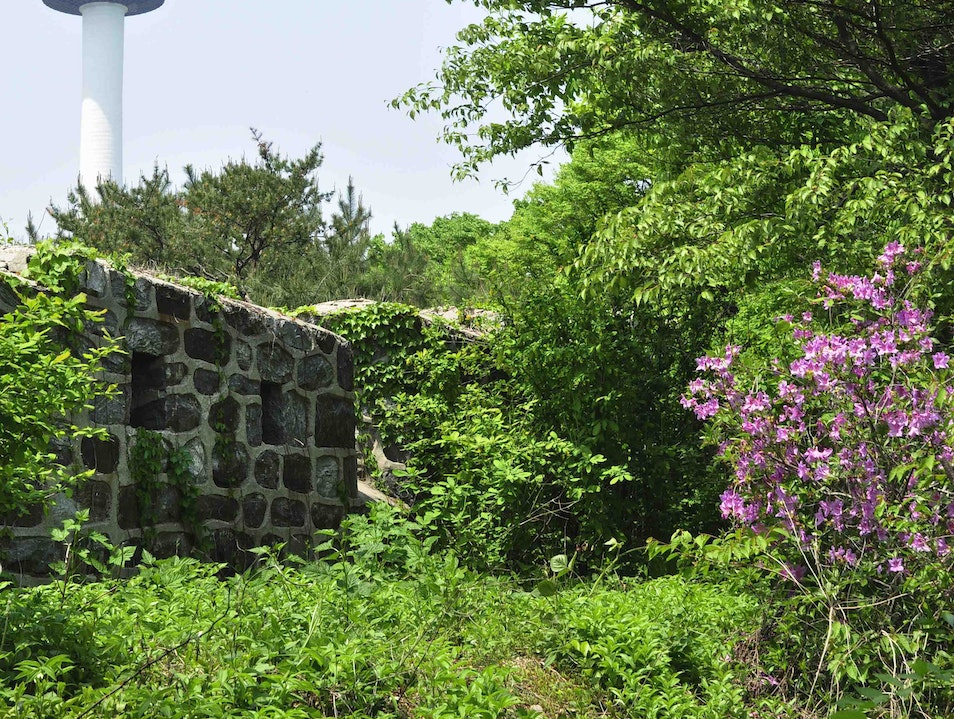 The Trails of Namsan Park