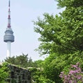 Namsan Park Seoul  South Korea