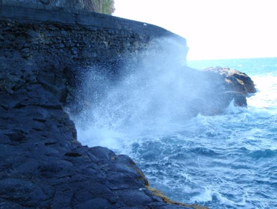 See the Blow Hole