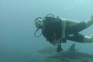Honduras: Diving Hot Spots