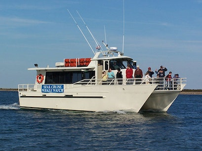 Shearwater Excursions Inc Nantucket Massachusetts United States