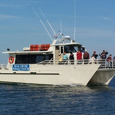 Shearwater Excursions Inc