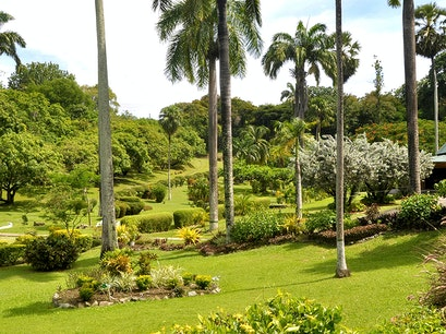Botanical Gardens Scarborough  Trinidad and Tobago