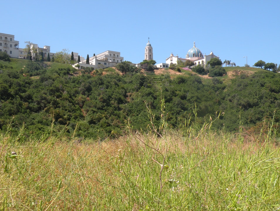 Hiking in the city of San Diego