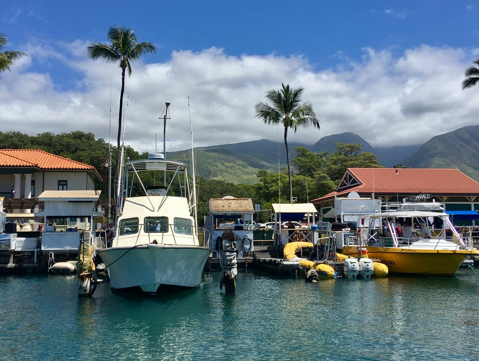 On the Water in Maui Lahaina Hawaii United States