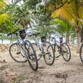 Eco Rides Rum Point  Cayman Islands