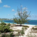Coral Gardens Resort Providenciales  Turks and Caicos Islands